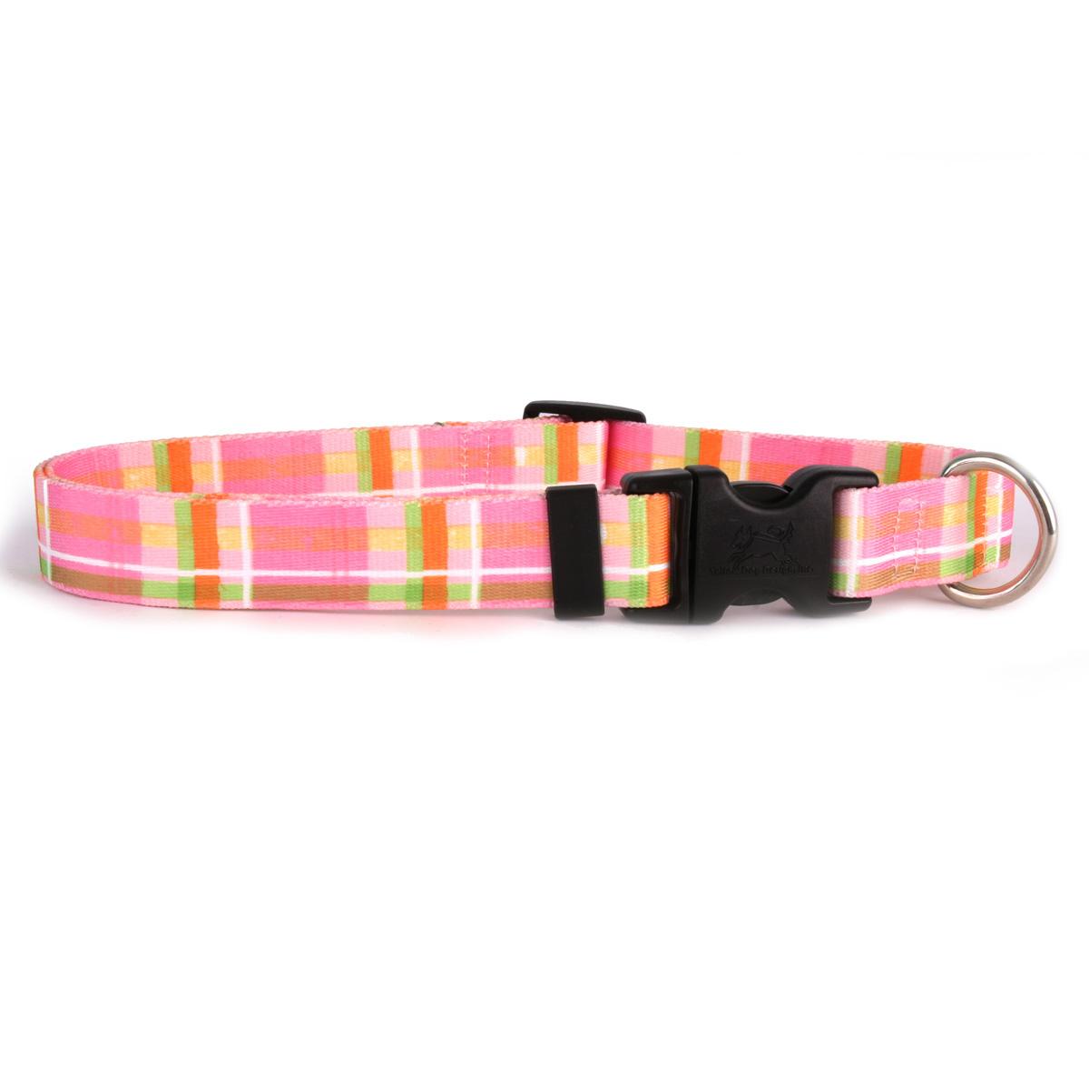 Yellow Dog Madras Pink Dog Collar with Tag-A-Long
