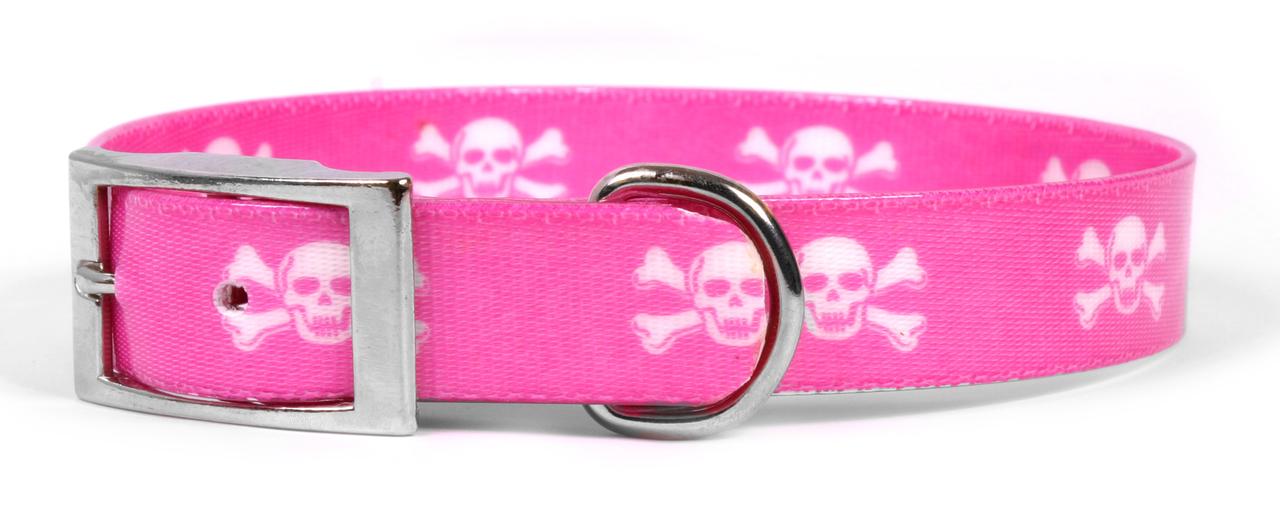 Yellow Dog Pink Skulls Elements Dog Collar