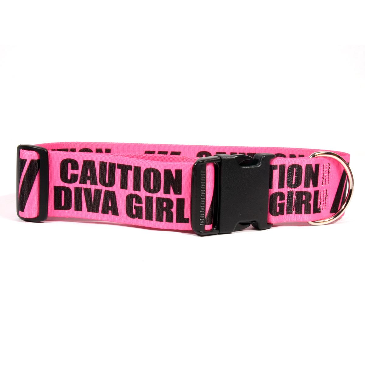 Yellow Dog 2 Inch - Caution Diva Girl Dog Collar