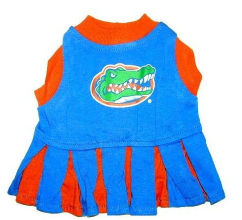 Hot Dog Florida Gators Dog Cheerleader Outfit