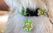 Shop Dog ID Tags by Yellow Dog Design