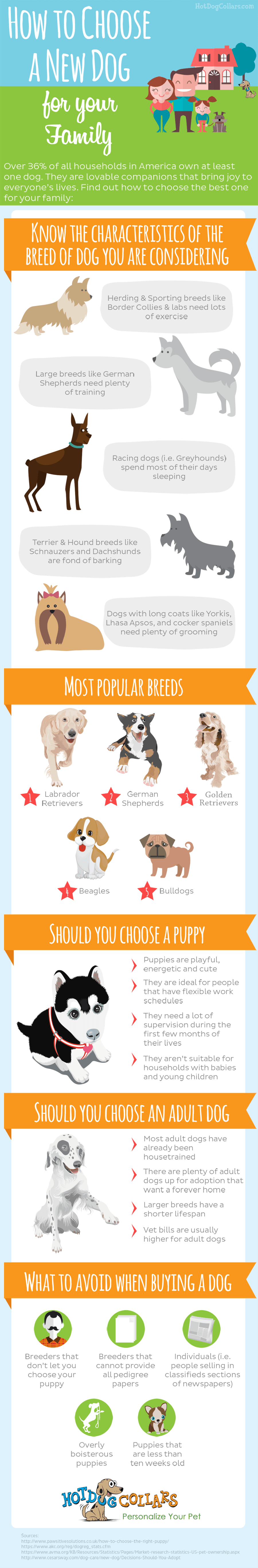 infographic on how to choose a new dog for your family