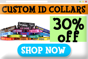 Custom Dog Collars On Sale