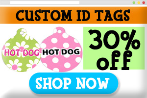 Custom dog id tags on sale