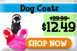 Designer dog coats sale