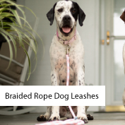 Shop all leashes, including braided rope leashes.