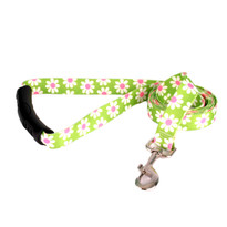Green Daisy EZ-Grip Dog Leash