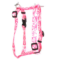 "Island Floral Pink Roman Style ""H"" Dog Harness"