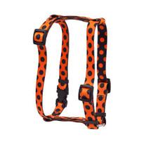 """Halloween Polka Dot Roman Style """"H"""" Dog Harness"""