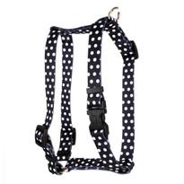 "Black Polka Dot Roman Style ""H"" Dog Harness"