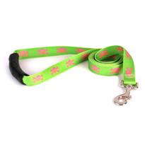 Green and Pink Skulls EZ-Grip Dog Leash