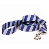 Team Spirit Blue and Silver Dog Leash