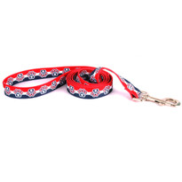 Patriotic Paws Dog Leash