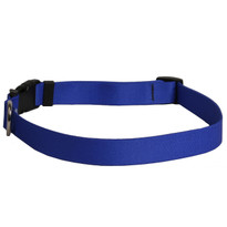 Solid Royal Blue Dog Collar