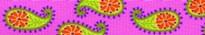Pink Paisley Waist Walker