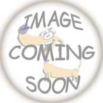 Baltimore Orioles Dog Harness