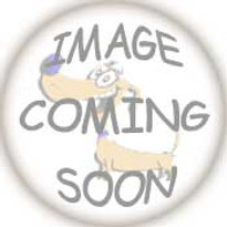 Tampa Bay Rays Dog Harness