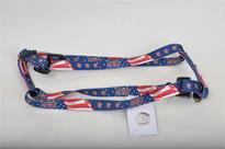 Washington Nationals Dog Harness