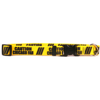 1 Inch - Caution Chicago Fan Dog Collar with Tag-A-Long