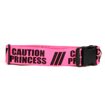 2 Inch - Caution Princess Dog Collar