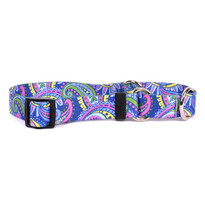 Paisley Power Martingale Dog Collar