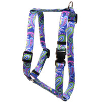 "Paisley Power Roman Style ""H"" Dog Harness"