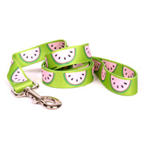 Wonderful Watermelons Dog Leash