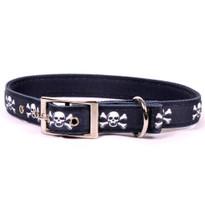 Skulls Uptown Dog Collar