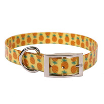 Pineapples Elements Dog Collar