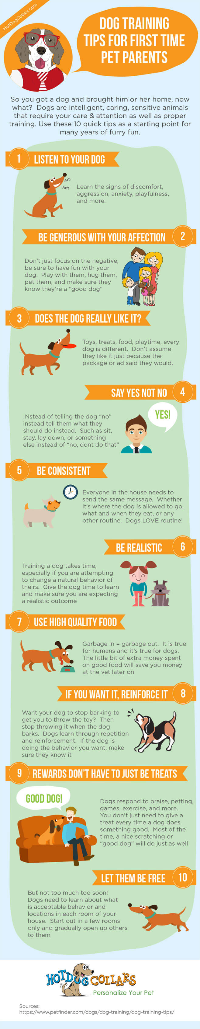 Just got a dog? need some help? Here are some quick tips to get you and your new family member off on the right paw